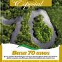 capa_revista_BASA